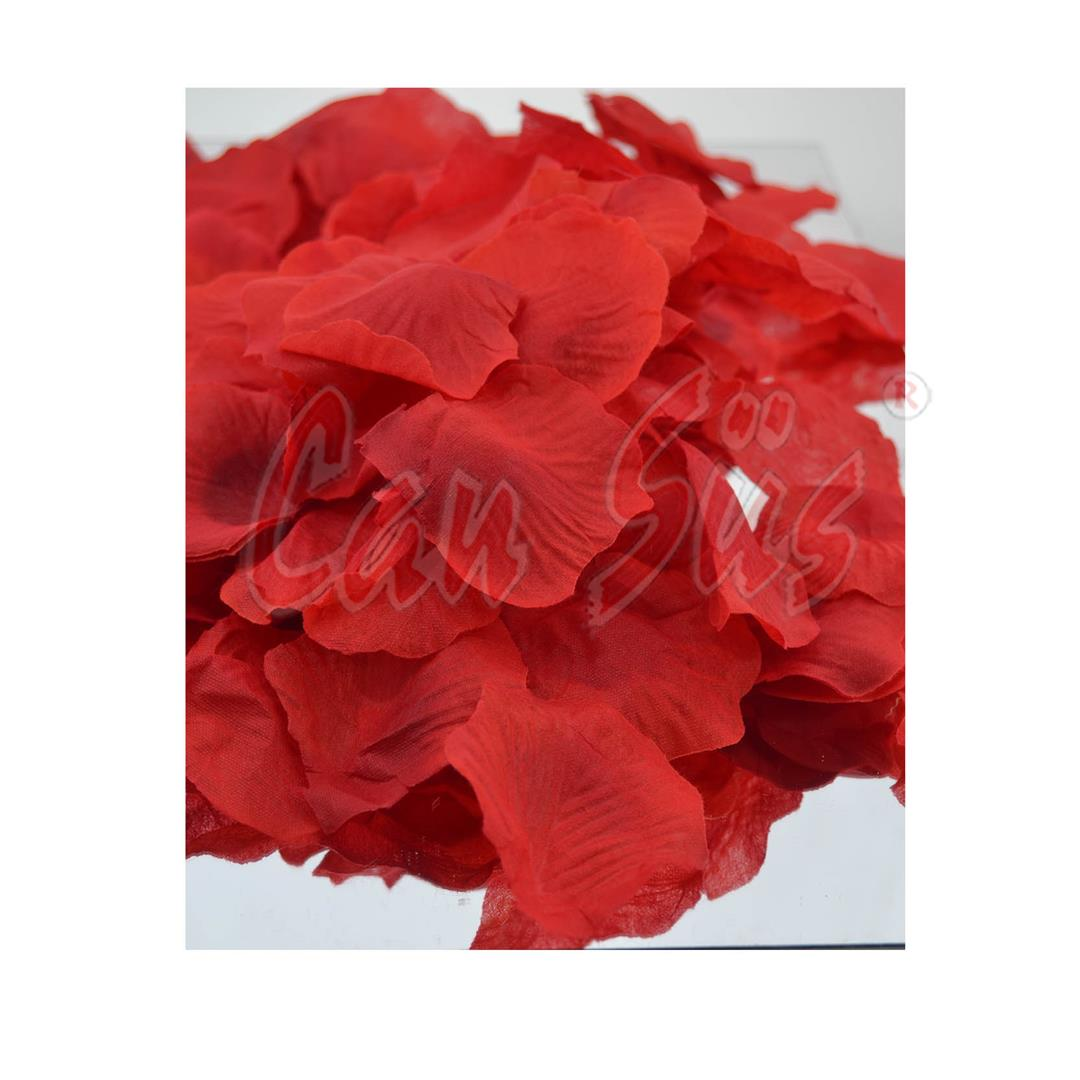 DECORATIVE ART DRIED RED