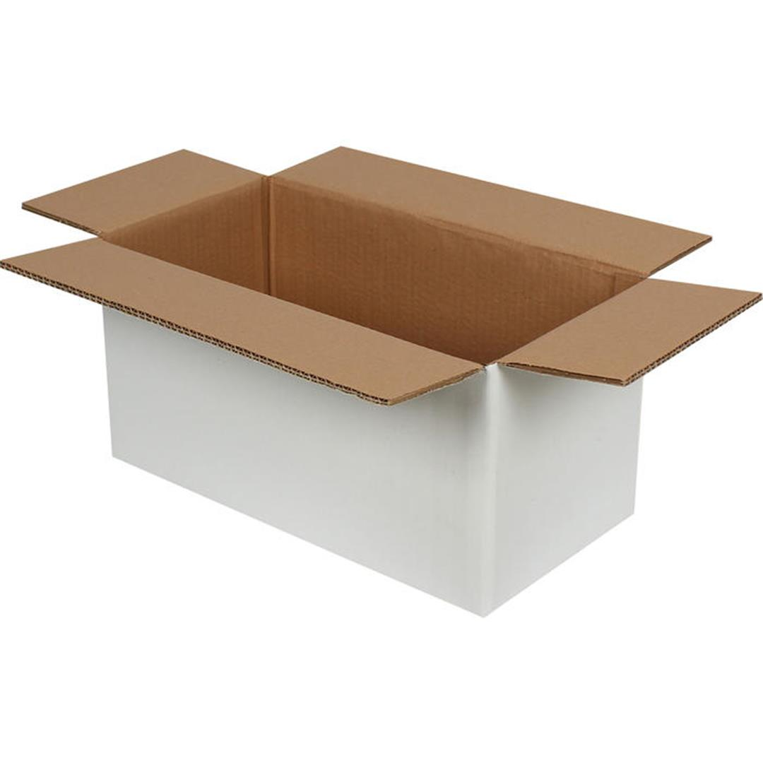 DOUBLE CORRUGATED WHITE PACKAGE - 40x20x20 CM